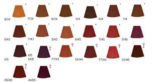 Dark Copper Hair Color Chart Hair Color 2016 2017