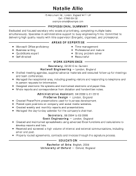 Professional Statement Resume Free Summary Example For Resume Sample