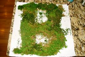 Moss Covered Letters Moss Covered Letters Cover Letter Diy Wedding Project Dsc24 How 1
