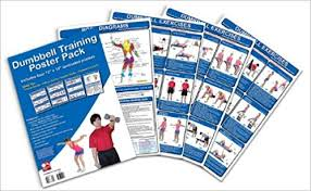 Exercise Wall Chart Free Download Download Dumbbell Training Poster Pack Dumbbell Workout