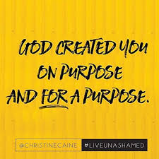 Image result for free images of purpose & Destiny