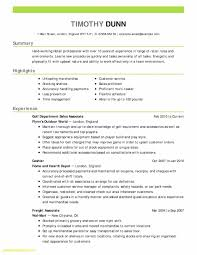 Elegant Business Analyst Resume Examples Template Www Pantry Magic Com