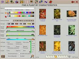 Small Picture Garden Design Software Garden Design Ideas