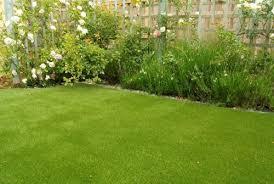 garden ideas for the indian summer