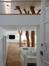 Modern Tree Houses Modern Tree House Interior House Modern