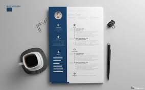 Resume Templates In Word Fascinating Resume Templates For Word FREE 60 Examples For Download
