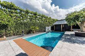 modern garden swimming pools