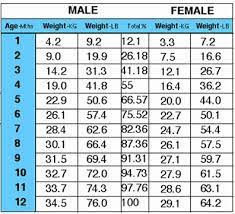 Labrador Weight Chart By Age Lab Weight Chart Goldenacresdogs Com