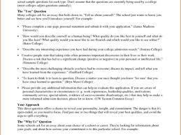 sample college essays sample persuasive essays high school 10 college application essay examples budget template