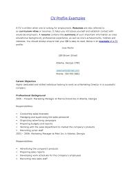 Download Resume Example Profile Haadyaooverbayresort Com