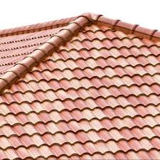 5 things to look out for while painting your tile roof
