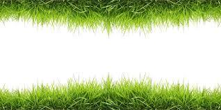 grass png. Unique Grass Throughout Grass Png