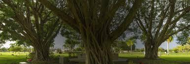 ft myers memorial gardens. Fine Memorial Fort Myers Memorial Gardens Funeral Home Ftmyersabout 1 With Ft R