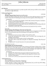 Examples Of Professional Resumes Writing Resume Sample Writing