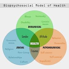 a general overview of the biopsychosocial model a diagram  a general overview of the biopsychosocial model a diagram