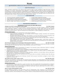 Executive Resume Resumes Template Writing Writers Reviews Samples