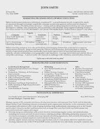 Professional Resumes Sample Gorgeous Professional Resumes Sample Simple Resume Examples For Jobs