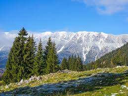 Easy winter hiking in the Carpathians - RomaniaTourStore