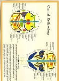 Cranial Reflexology Chart Cranial Reflexology A4 Chart