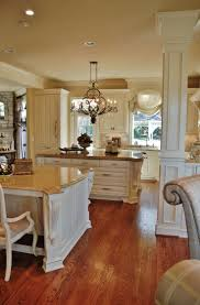 Southern Kitchen Design 17 Best Images About The Gold Southern Kitchen On Pinterest