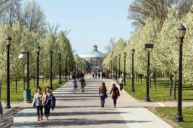 Study New York | Welcome To New York : Study New York