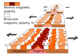 scientists use to map the ocean floor