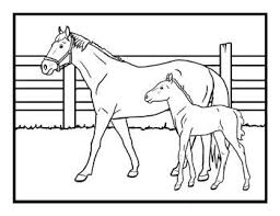 Small Picture Shire Horse Coloring Pages Coloring Pages