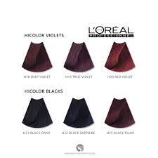 Loreal Hicolor Colour Chart Loreal Excellence Hicolor Blacks For Dark Hair Only H22 Black Sapphire