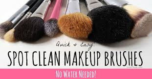 brush cleaner for a fast