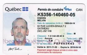 Driver Driver Quebec Licence Licence