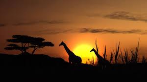 Африка Западная Африка