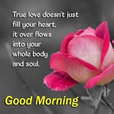 Good Morning Soulmate Quotes Best of Good Morning Soulmate Quote Quotesta