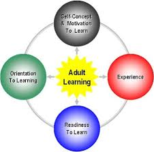 Adult Learning Theory Andragogy Learning Theories Etc547