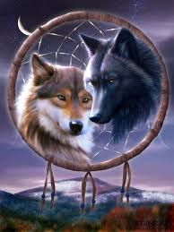 Are Dream Catchers Good Or Bad wolf dream catcher art wolf lover Pinterest Dream 35