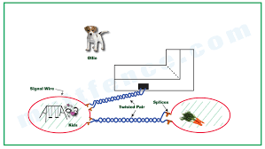 pet safe electric fence acirc home and furnitures reference pet safe electric fence twisted pair connects through signal wire 2 twisted pair connects