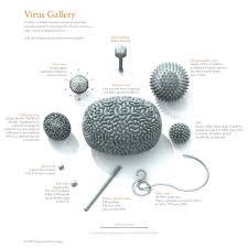 Bryan Christie Design Virus Gallery On Behance