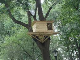 tree house plans for one tree. Tree House Building Plans Or Small Floor Homes Zone For One U