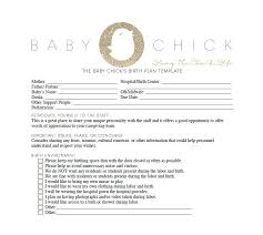 Why Is It Important To Have A Birth Plan 47 Printable Birth Plan Templates Birth Plan Checklist