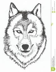Drawn Wolf Wolf Hand Drawn Sketch Vector Illustration Stock Vector