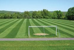 green grass soccer field. With Green Grass Soccer Field