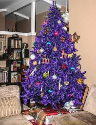 Purple Christmas Trees Colored Christmas Trees Real Christmas