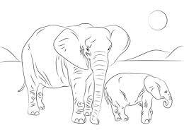 Afrikaanse Olifantenfamilie Kleurplaat Aan De Zee Elephant