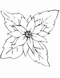Disegni Da Copiare Belli In Bianco E Nero Disegni In Bianco E Nero