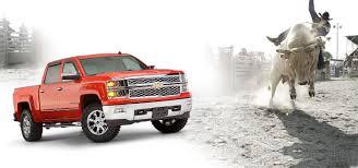 Chevrolet | Bushwacker