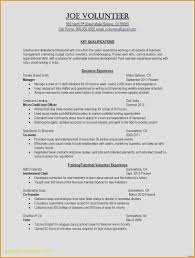 Resume Tips For College Students Unique Resumes For College Students