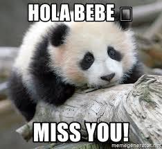 hola bebe miss you sad panda