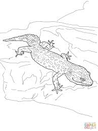 Small Picture Leopard Gecko coloring page Free Printable Coloring Pages
