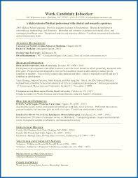 Resume Internship Format - Embersky.me