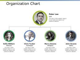 Organizational Chart Designs Organization Chart Ppt Powerpoint Presentation Inspiration