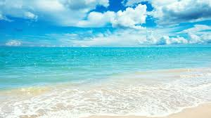 summer background summer background hd wallpapers pulse